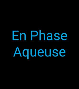 Thempores_WB_en-phase-aqueuse